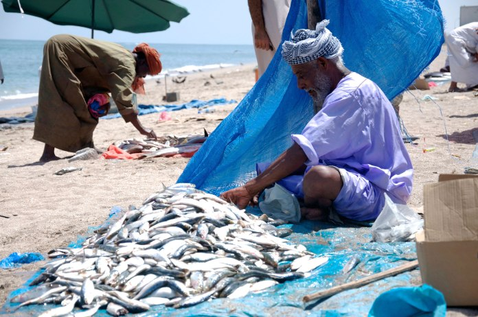 Fish-Market-32