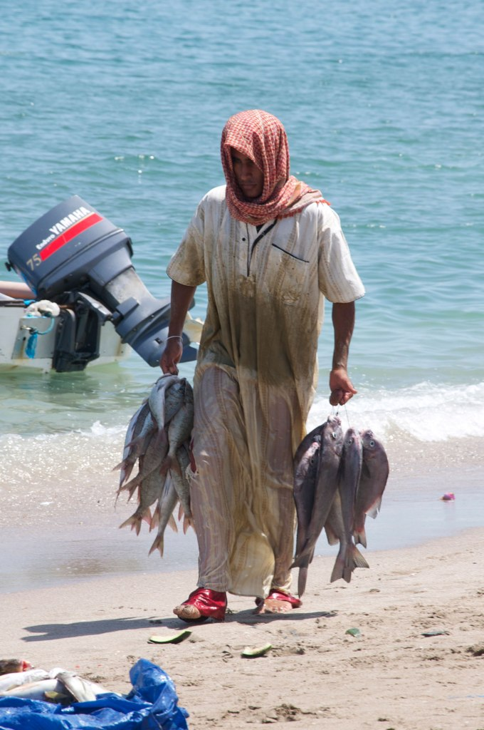 Fish-Market-35