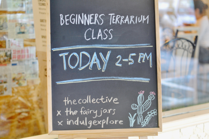 Terrarium Workshop 1