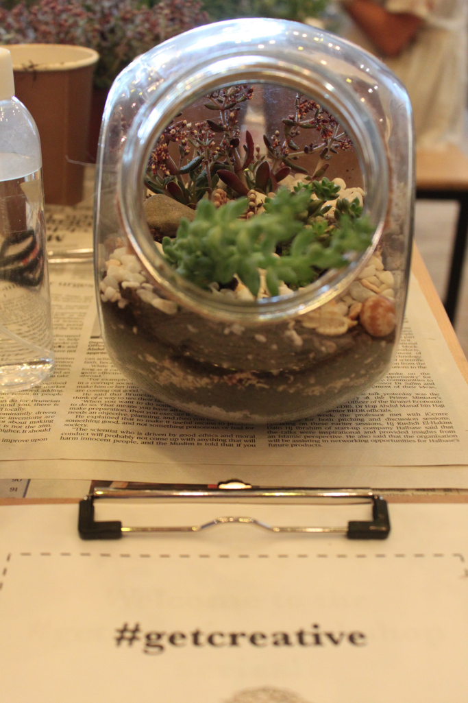 Terrarium Workshop 12