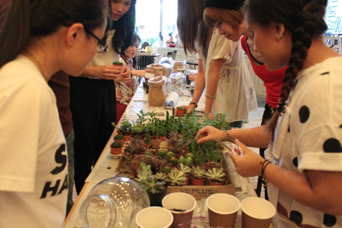 Terrarium Workshop 13