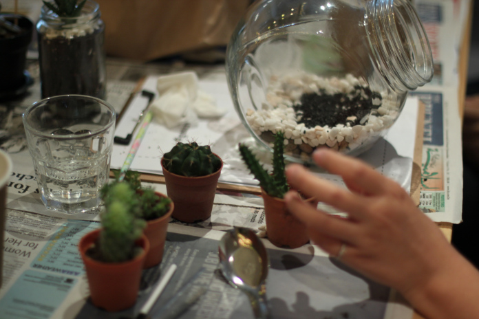 Terrarium Workshop 33
