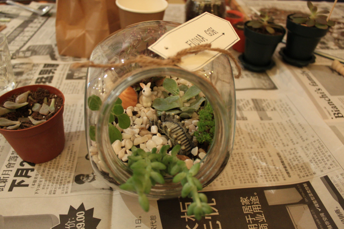 Terrarium Workshop 40