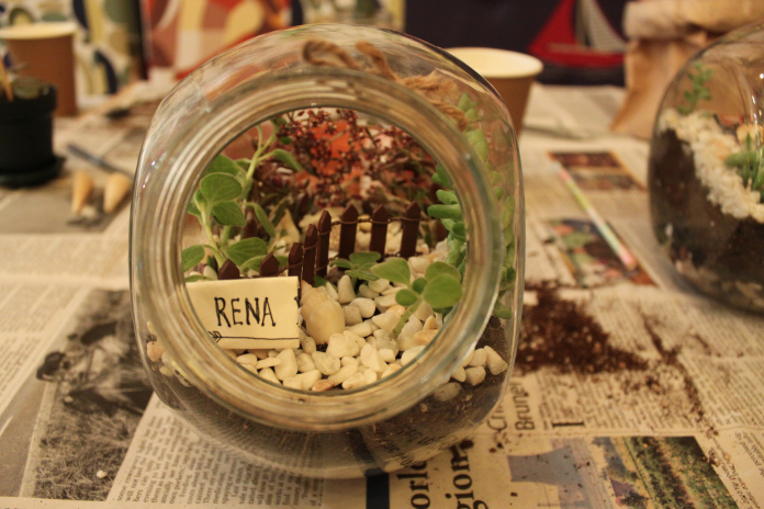 Terrarium Workshop 41