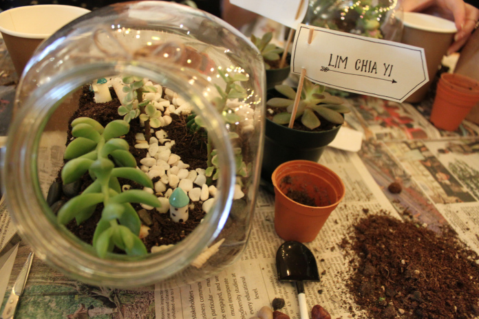Terrarium Workshop 46
